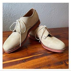Allen Edmonds Clean, modern buck derby suede shoe